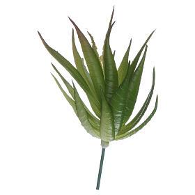 Musgo, líquenes, plantas.: Áloe para belén hecho con bricolaje