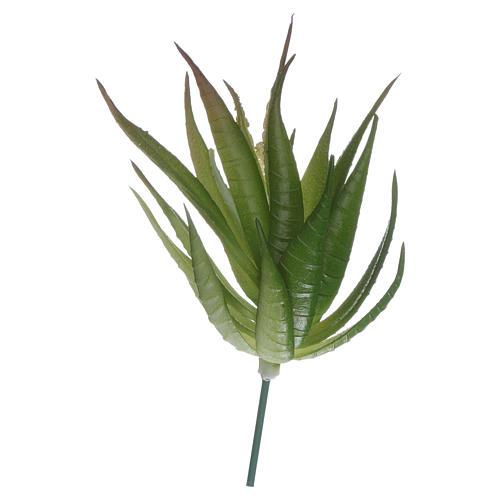 Aloe pour bricolage crèche 1