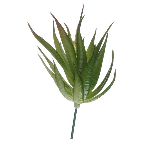 Aloe per presepe fai da te 1