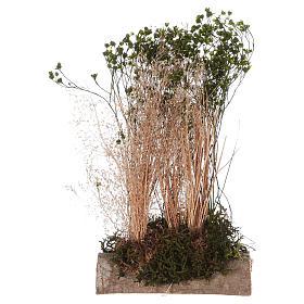 Muschio, licheni, piante, pavimentazioni: Cespuglio per presepe 20x10x5 cm