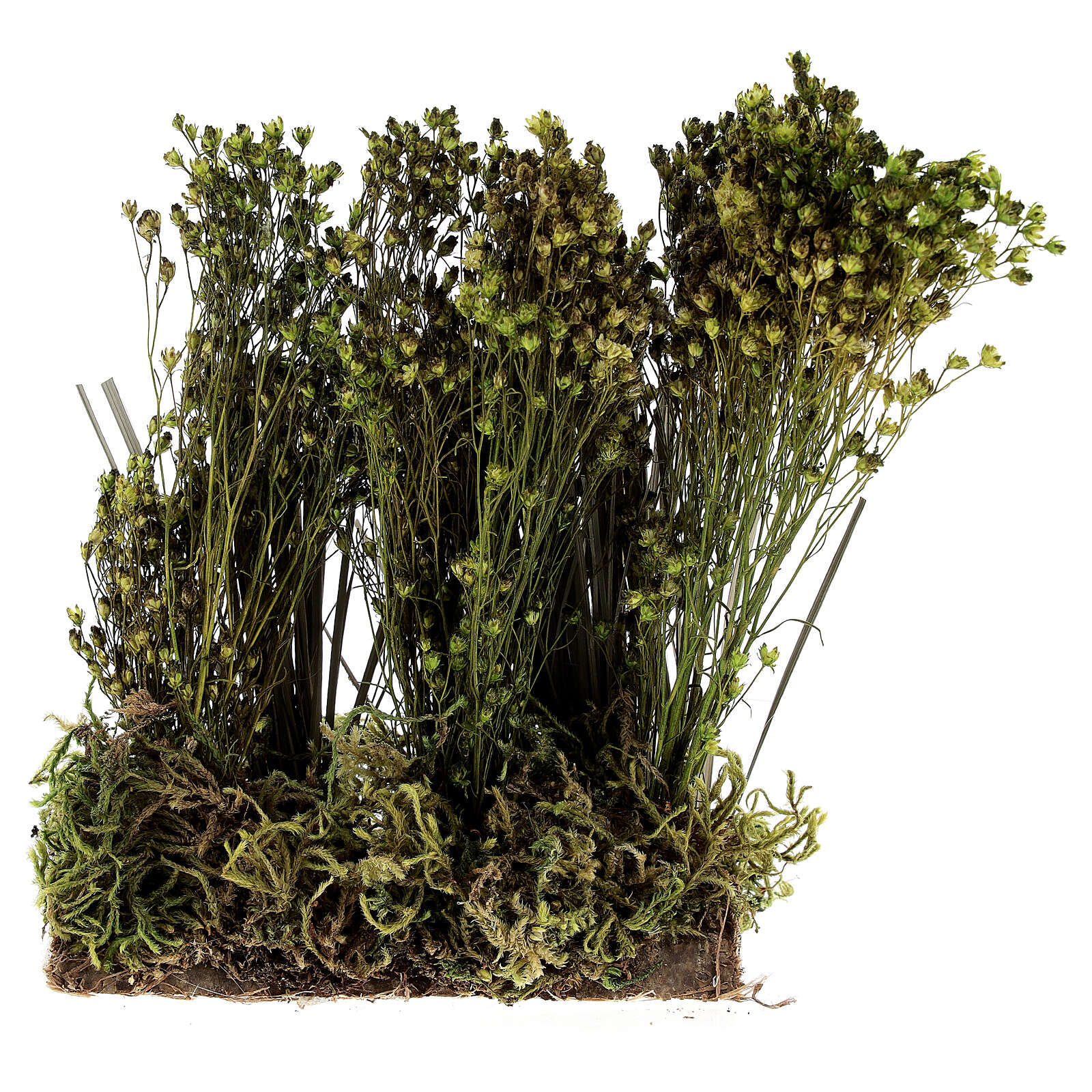 Arbusto para presépio 19x9x6 cm 4