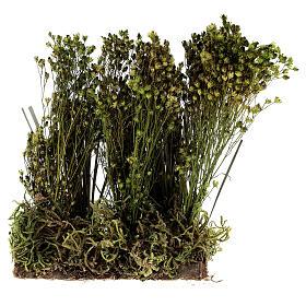 Arbusto para presépio 19x9x6 cm s1