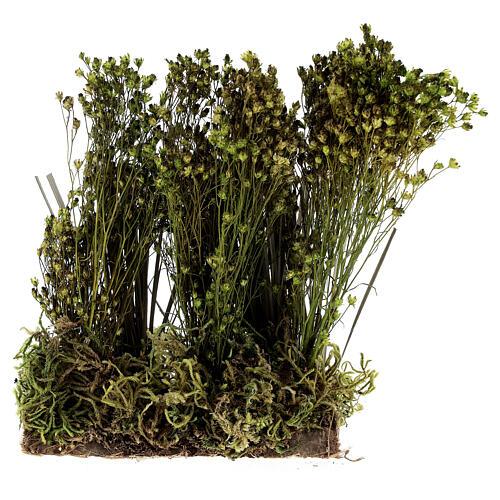 Arbusto para presépio 19x9x6 cm 1