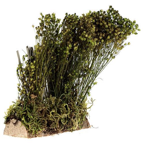 Arbusto para presépio 19x9x6 cm 2