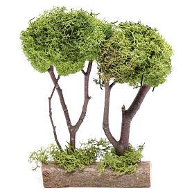 Mousse végétale, Lichens, Arbres, Pavages: Arbre double liche pour crèche 20x15x5 cm