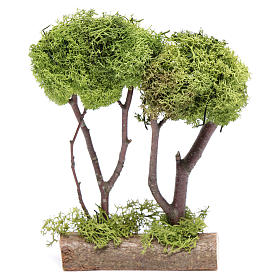 Wooden double tree with lichen for nativity scene s1