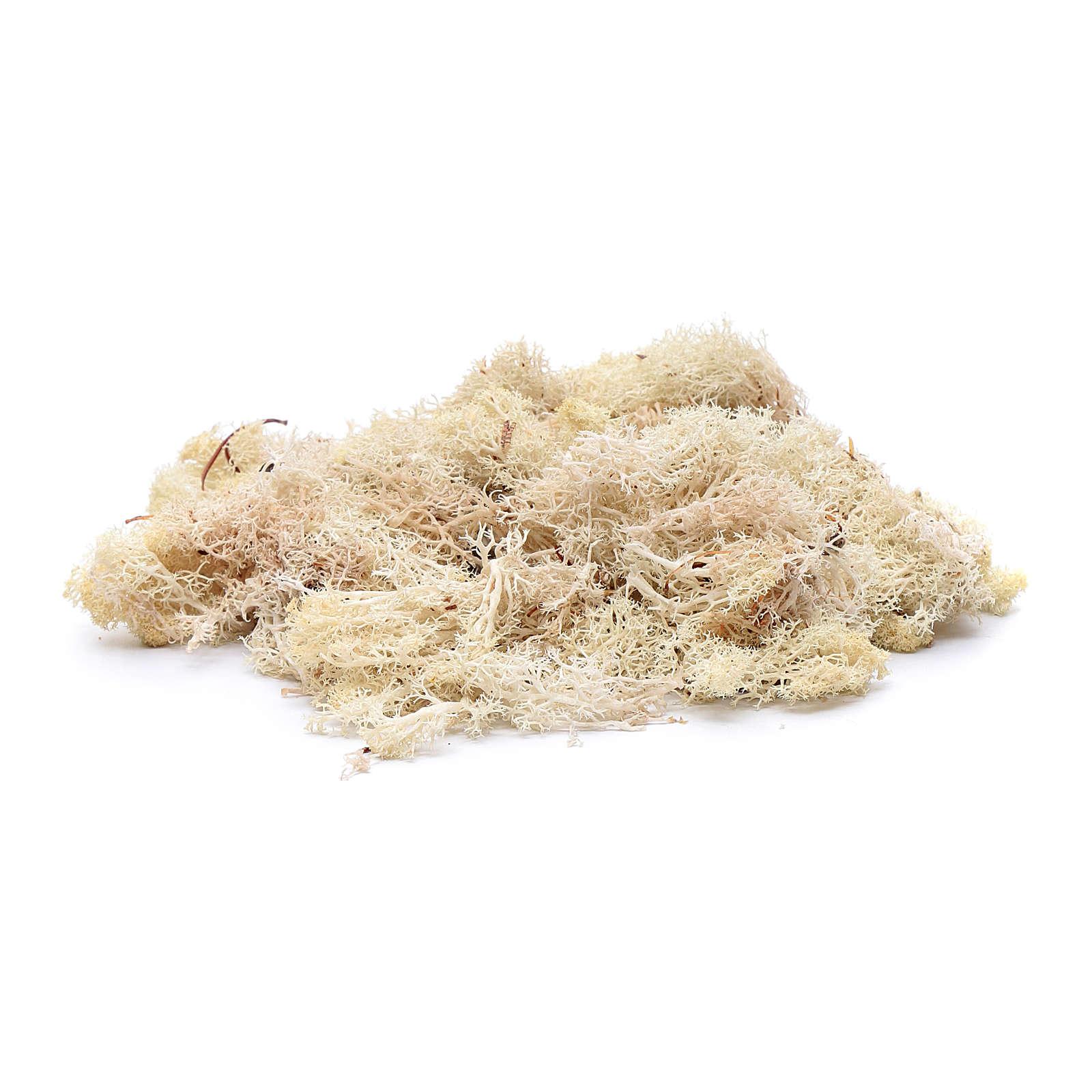 Lichene bianco 100 gr per presepe 4