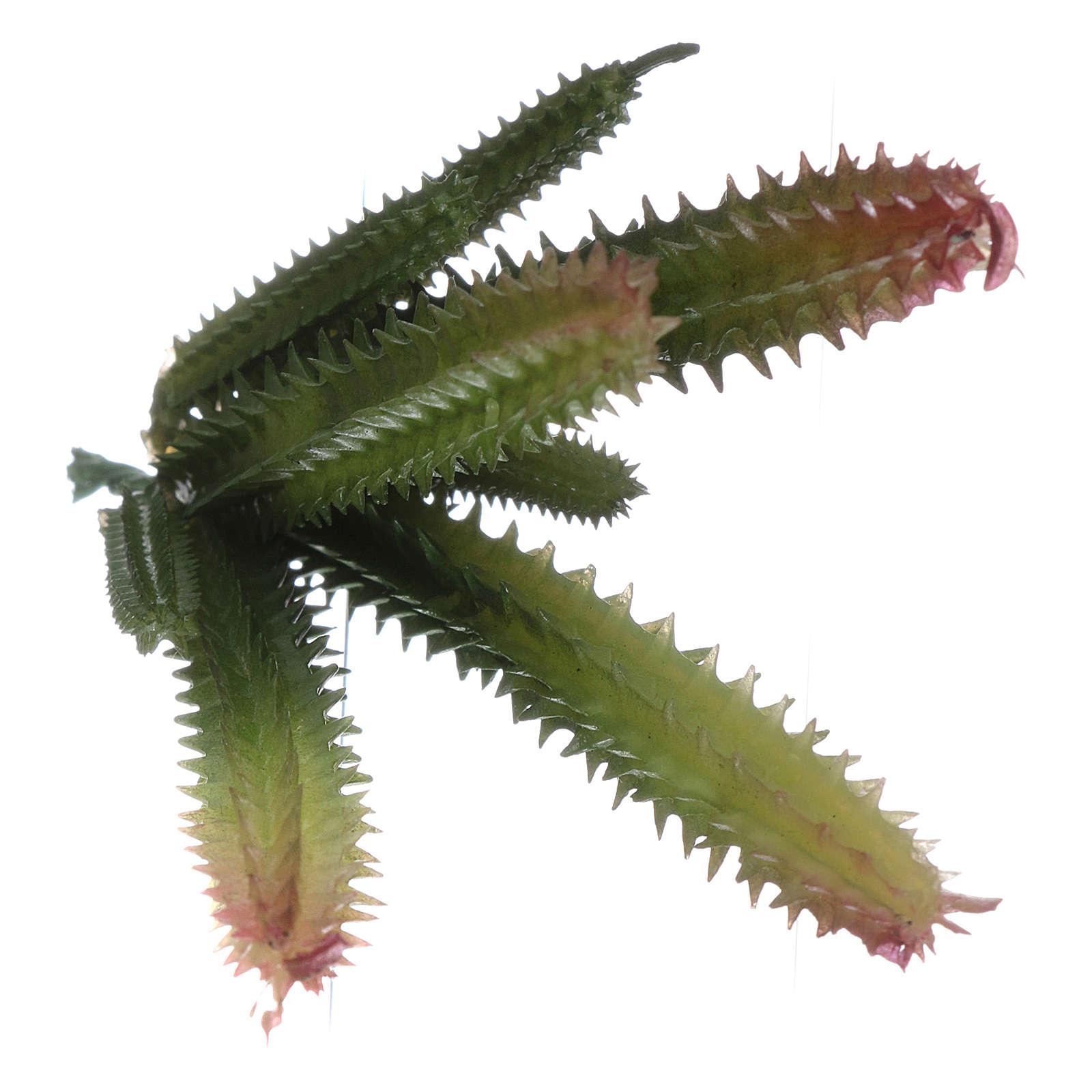 Cactus 7 steli per presepe 4
