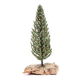 Nativity scene cypress 12 cm s1