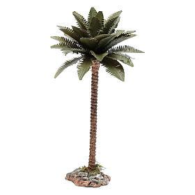 Nativity scene palm 20 cm s1