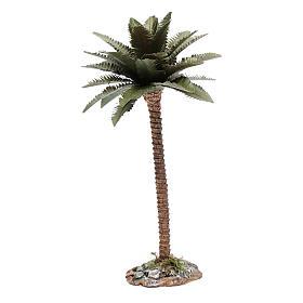 Palmier 20 cm pour crèche s2