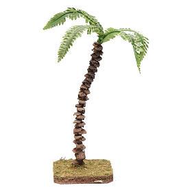 Musgo, líquenes, plantas.: Palma con tronco particular y hojas moldeables 18 cm accesorio belén