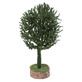Muschio, licheni, piante, pavimentazioni: Albero presepe h reale 19 cm assortito