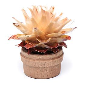Cactus in vaso h reale 6 cm presepe s1
