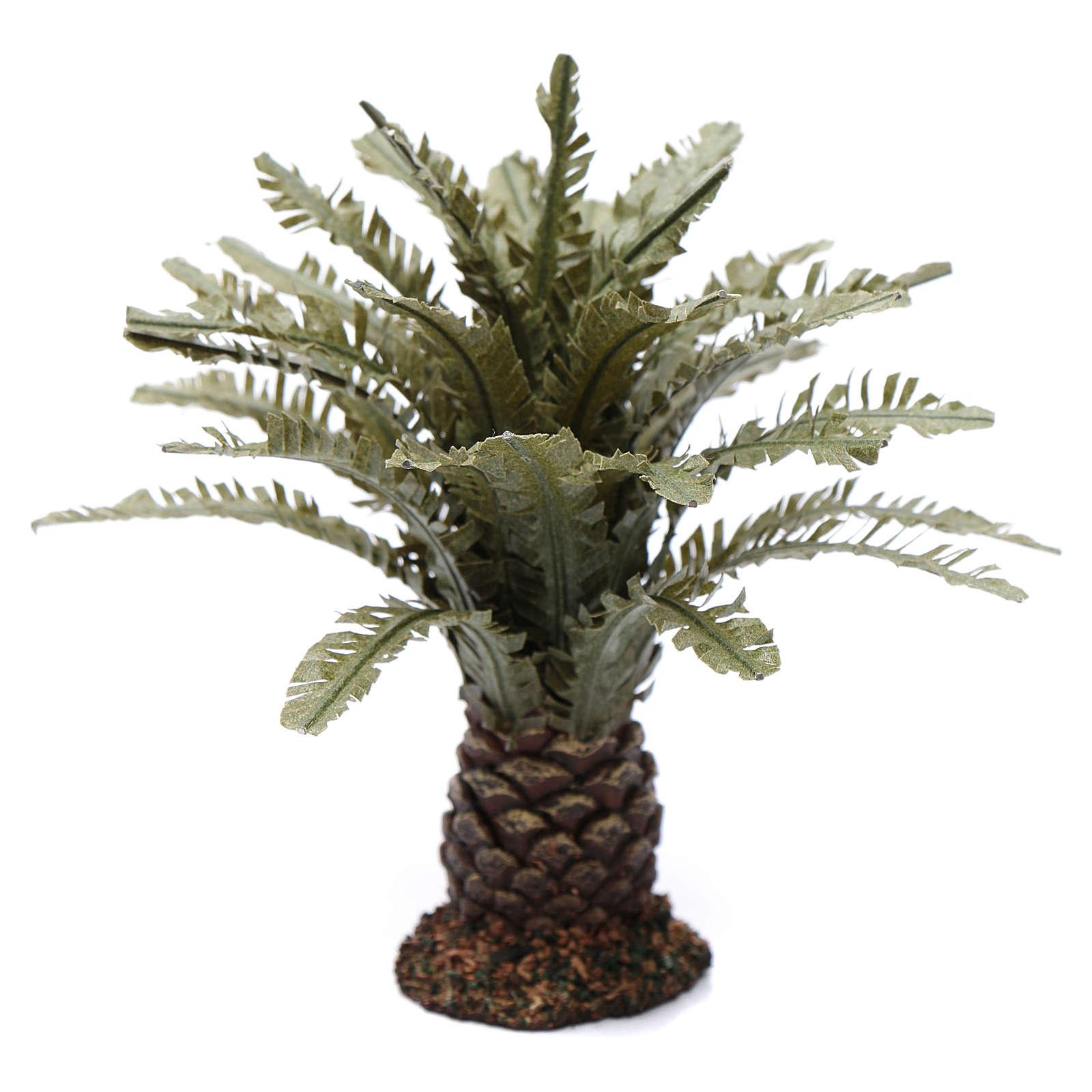 Palma nana presepe h reale 12 cm 4