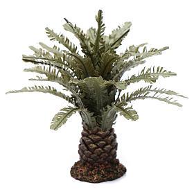 Palmeira anã presépio altura real 12 cm s1