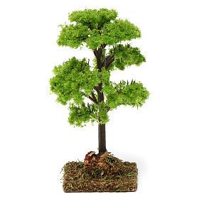 Musgo, líquenes, plantas.: Árbol verde para belén 7-10 cm de altura media