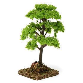 Árbol verde para belén 7-10 cm de altura media s2