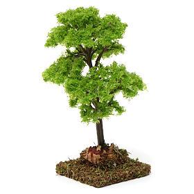 Árbol verde para belén 7-10 cm de altura media s3