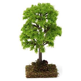 Árbol verde para belén 7-10 cm de altura media s4