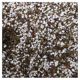 Mech, porosty, krzewy, podłoża: Żwir drobny biały z mchem do szopki 160 g