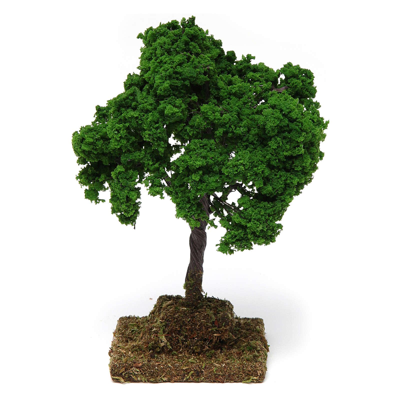 Oak 15x10x10 cm 4