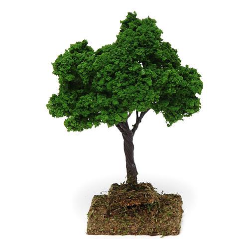 Oak 15x10x10 cm 2