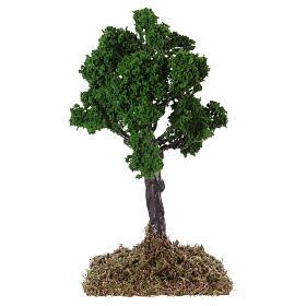 Muschio, licheni, piante, pavimentazioni: Quercia per presepe 20x10x10 cm