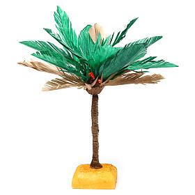Palma bicolore per presepe 20x10 cm s1