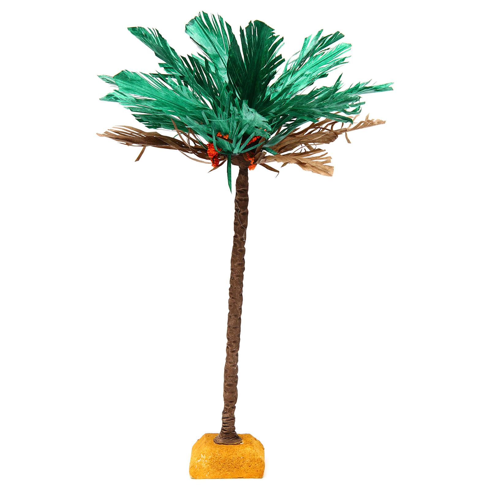 Palma bicolore h reale 30 cm 4
