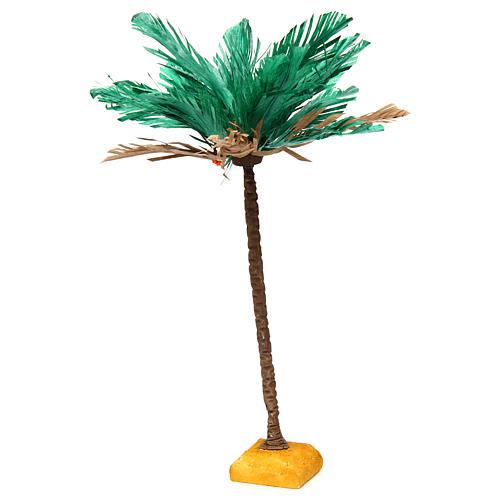 Palma bicolore h reale 30 cm 2