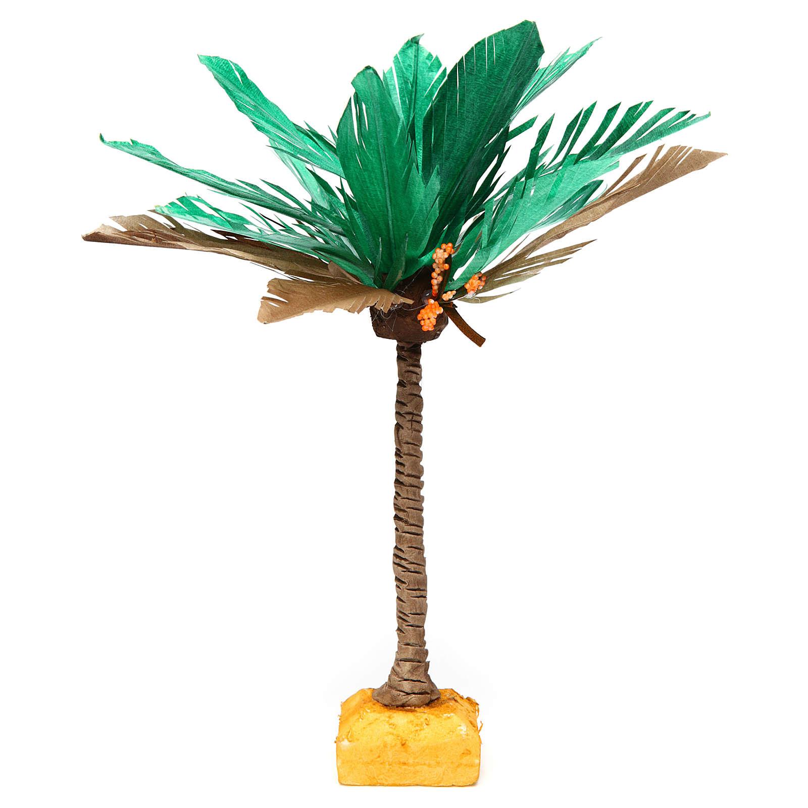 Palma bicolore h reale 22 cm 4