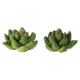 Musgo, líquenes, plantas.: Set 2 plantas 2x3x3 cm resina para belén