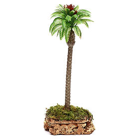 Palma con base in sughero h reale 20 cm s1