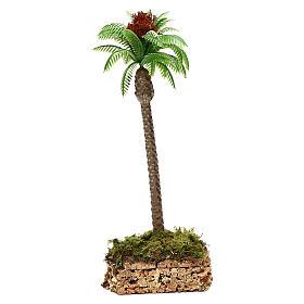 Palma con base in sughero h reale 20 cm s2