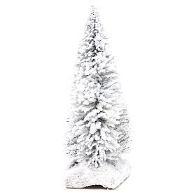 Snowy fir with cork base for Nativity scene real h. 15 cm s1