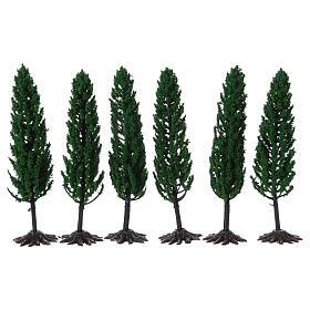 Cipresso, albero per presepe h reale 15 cm s1