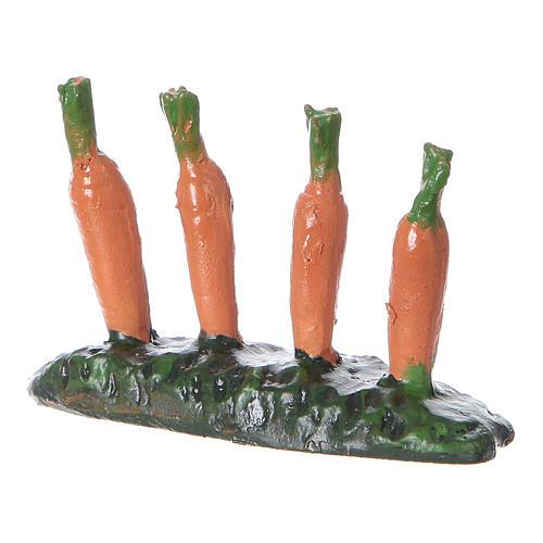 Fila di carote piantate orto 5x5x5 cm presepe 7 cm 2