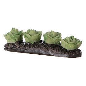 Row of lettuce in resin 5x5x5 cm s2