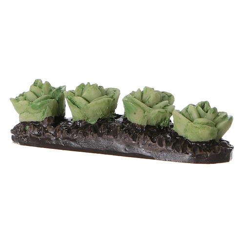 Row of lettuce in resin 5x5x5 cm 2