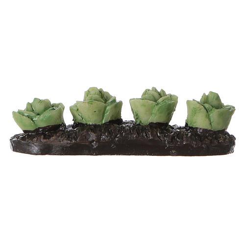 Row of lettuce in resin 5x5x5 cm 3
