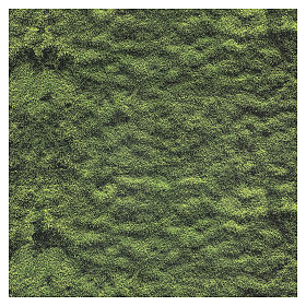 Mouldable moss paper for Nativity Scene 60x60 cm s3