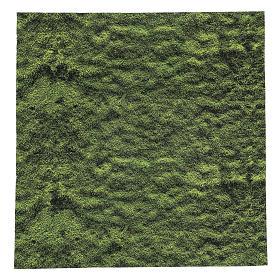 Fondos y pavimentos: Papel modelable musgo belén 60x60 cm
