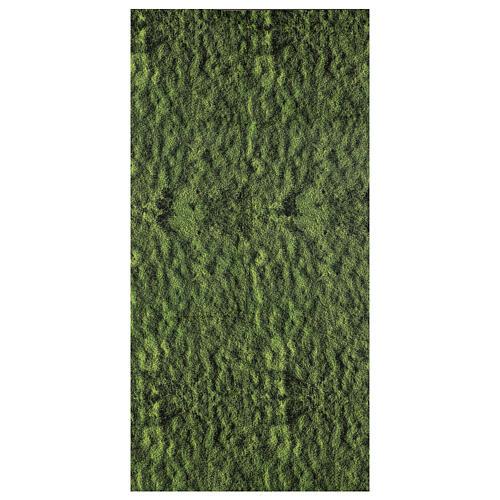 Carta muschio modellabile per presepe 120x60 cm 1