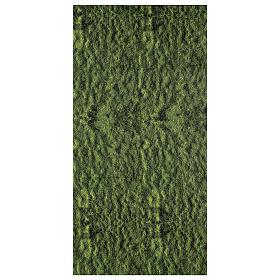 Nativity backdrop moss paper 120x60 cm s1