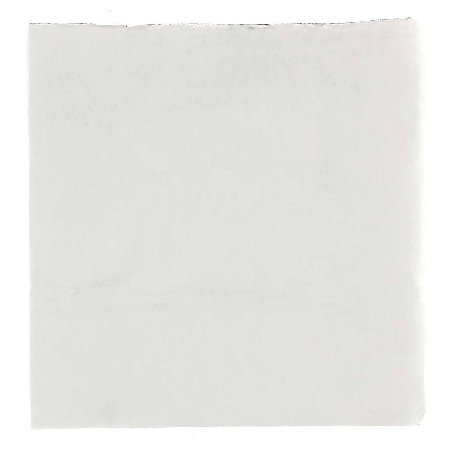 Mouldable snowy paper for Nativity scene 30x30 cm 4
