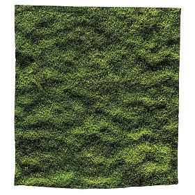 Moss design paper for nativity scenes 30x30 cm s1
