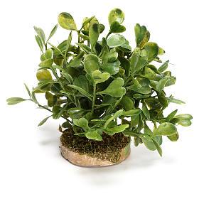 Arbusto 5x10x5 cm para bricolagem de presépio com figuras de 10-12 cm de altura média s2