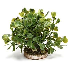 Arbusto 5x10x5 cm para bricolagem de presépio com figuras de 10-12 cm de altura média s3