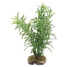 Musgo, Líquenes, Plantas, Pavimentações: Arbusto 10x5x5 cm para bricolagem de presépio com figuras de 10 -12 cm de altura média